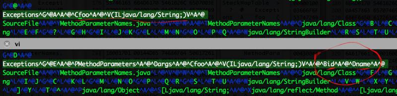 java8-parameters